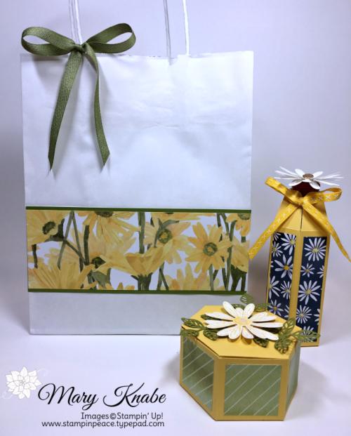 Daisy Delight Designer Series Paper & Daisy Punch