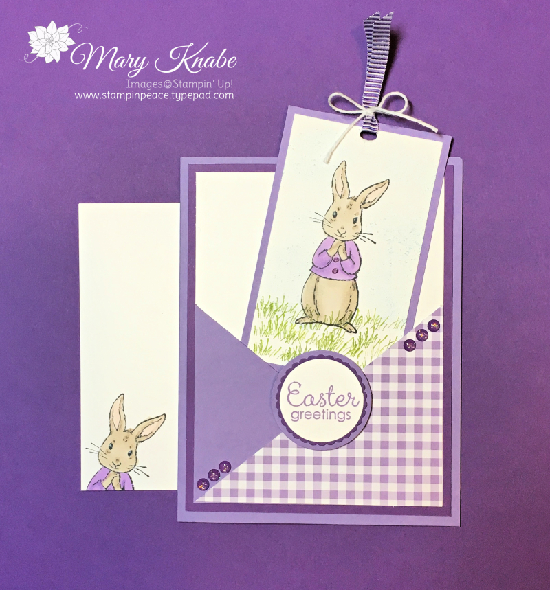 Fable Friends Stamp Set and Gingham Gala Designer Series Paper Pack
