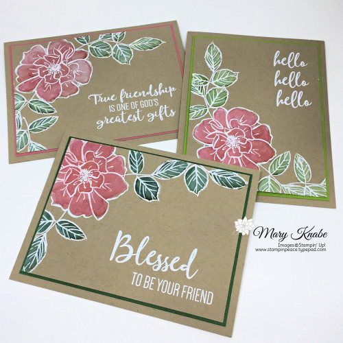 To A Wild Rose Stamp Set by Stampin' Up!
