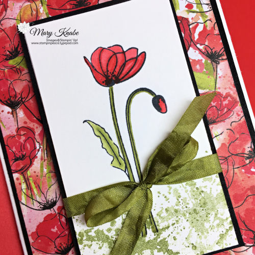 Painted Poppies Stamp Set, Peaceful Poppies Designer Series Paper by Stampin' Up!